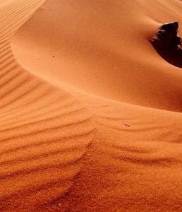 sand-1580928_960_720